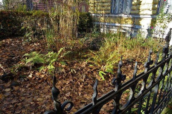 Vorgärten in Graz Ökoteam Garten Zaun