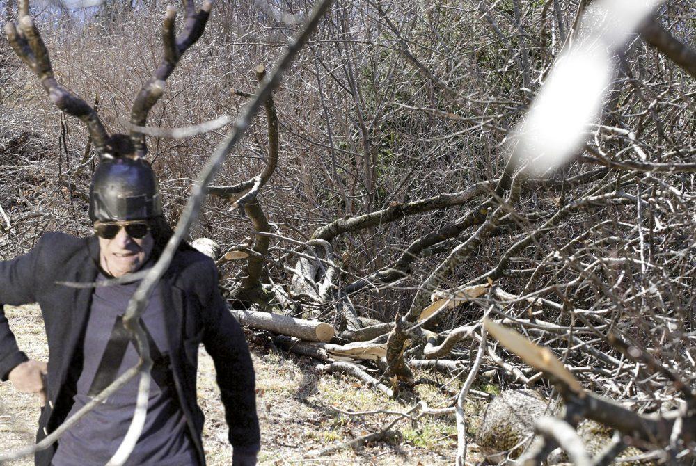 uniT Born to be wild Wald