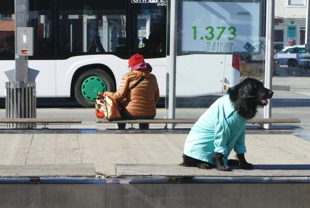 Workinglifebalance Die Einsamkeit dieser Stadt This City's Loneliness Bushaltestelle