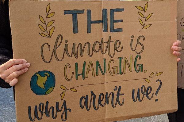 Plakat Manuela Zechner Klimawandel Graz 2030 Zukunftshörprojekt